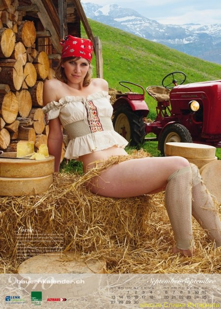 Farm - Story Tags -