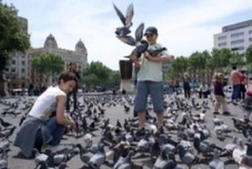 Туристам на заметку – странные законы