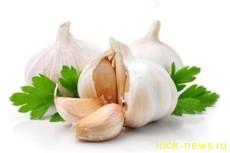 В чём лечебные свойства чеснока?