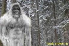 Снежный человек - это мутант