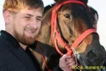 Рамзан Кадыров снимется в кино