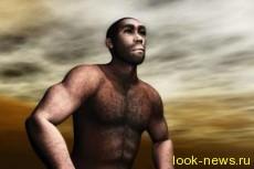 Крахмал помог эволюционировать мозгу Homo