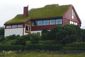 Крыши Копенгагена переживут массовое озеленение