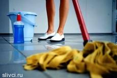 Чешские студенты-уборщики открыли агентство. Они готовы мыть полы без трусов за 170 евро в час