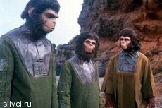 Планета обезьян удержала лидерство в прокате