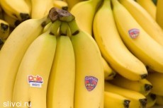 Бананы необходимо есть каждый день