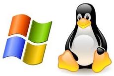 «Линукс» или «Майкрософт»