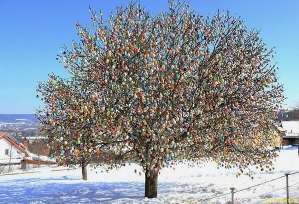 «Пасхальное дерево» из 10 000 яиц