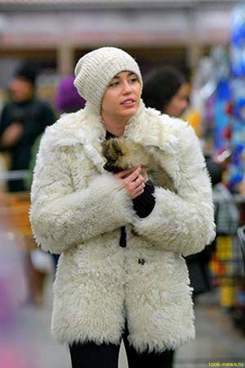 Майли Сайрус отказалась от подаренного щенка