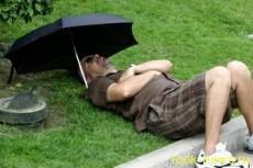 Ученые заявляют, что дневной сон вреден для жизни