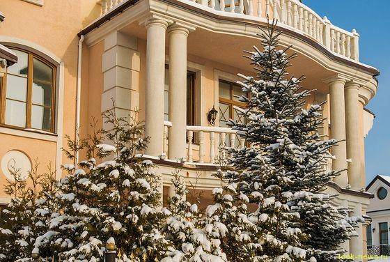 Анастасия Волочкова купила особняк в Подмосковье стоимостью 3 000 000 долларов