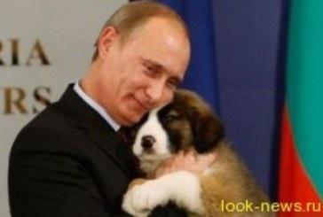 Владимир Путин дал совет, как добиться подарка от мужчины