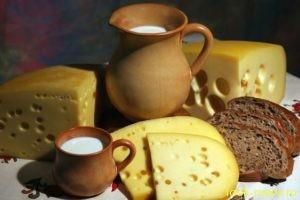 Ученые рассказали о полезных свойствах сыра